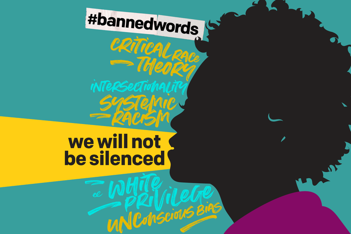 Silhouette of person with curly hair in black on sea green background. A ripped strip of paper with hashtag #bannedwords followed by words in expressive writing: Critical Race Theory, Intersectionality, Systemic Racism, White Privilege, Unconscious Bias.